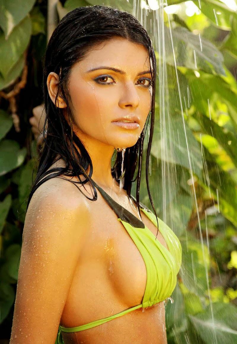 Sherlyn Chopra Nude Pose Photos Kamasutra 3 D  Sex Photos -7787