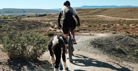 12 tipp a környezettudatos edzéshez