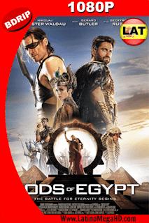Dioses De Egipto (2016) Latino HD BDRIP 1080P - 2016
