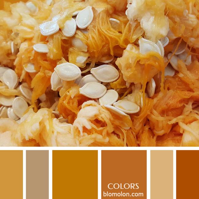 variedad_en_color_paletas_de_colores_39