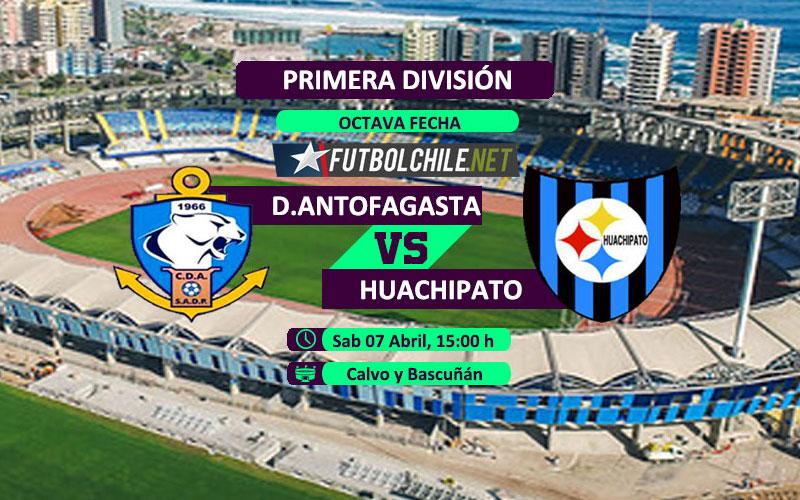 Deportes Antofagasta vs Huachipato: Previa, horario, dónde ver en vivo por TV y online por la Primera División