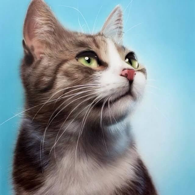 09-Cat-M-Oosterlee-Realistic-Airbrush-Animal-Paintings-www-designstack-co