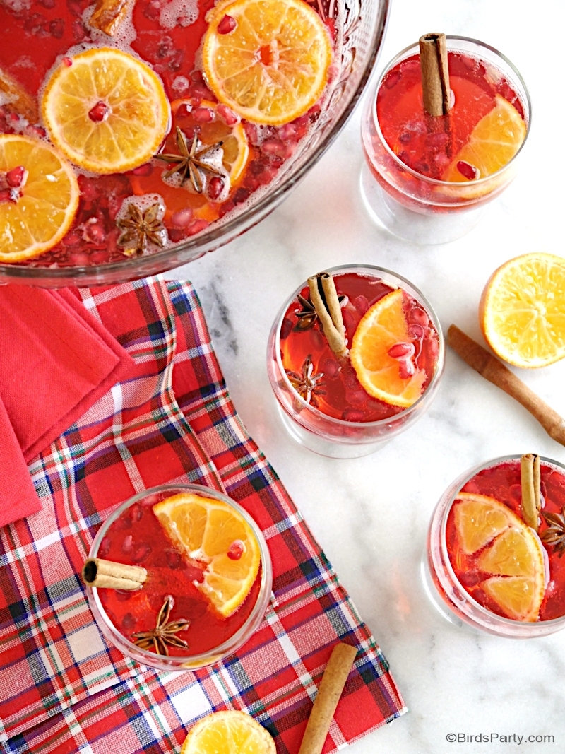 Cranberry Vodka Christmas Punch Recipe - a quick, easy and super delicious big-batch cocktail, perfect for serving a crowd during the holidays! by BirdsParty.com @birdsparty #cocktails #bigbatchcocktail #christmaspunch #holidaypunch #christmascocktail #cranberryrecipes #cranberrydrinks #cranberrycocktails