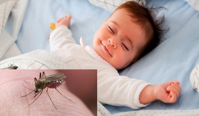 Cara Menghilangkan Bekas Gigitan Nyamuk Pada Bayi