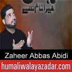 https://www.humaliwalyazadar.com/2018/09/zaheer-abbas-abidi-nohay-2019.html