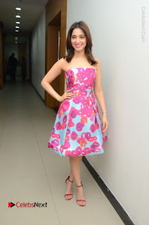 Actress Tamanna Latest Images in Floral Short Dress at Okkadochadu Movie Promotions  0155.JPG