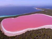 Danau Unik Airnya Berwarna Pink