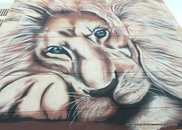 Lion mural in Karama Dubai
