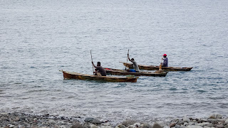 Lot of fish in the shores in Sao Tome