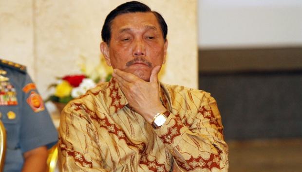 Tak Pecat Luhut, Jokowi Dianggap Penakut