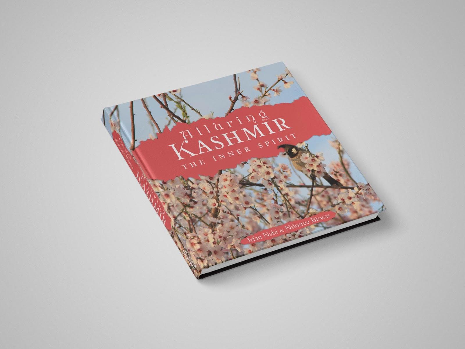 mishmash Alluring Kashmir by Irfan Nabi & Nilosree Biswas