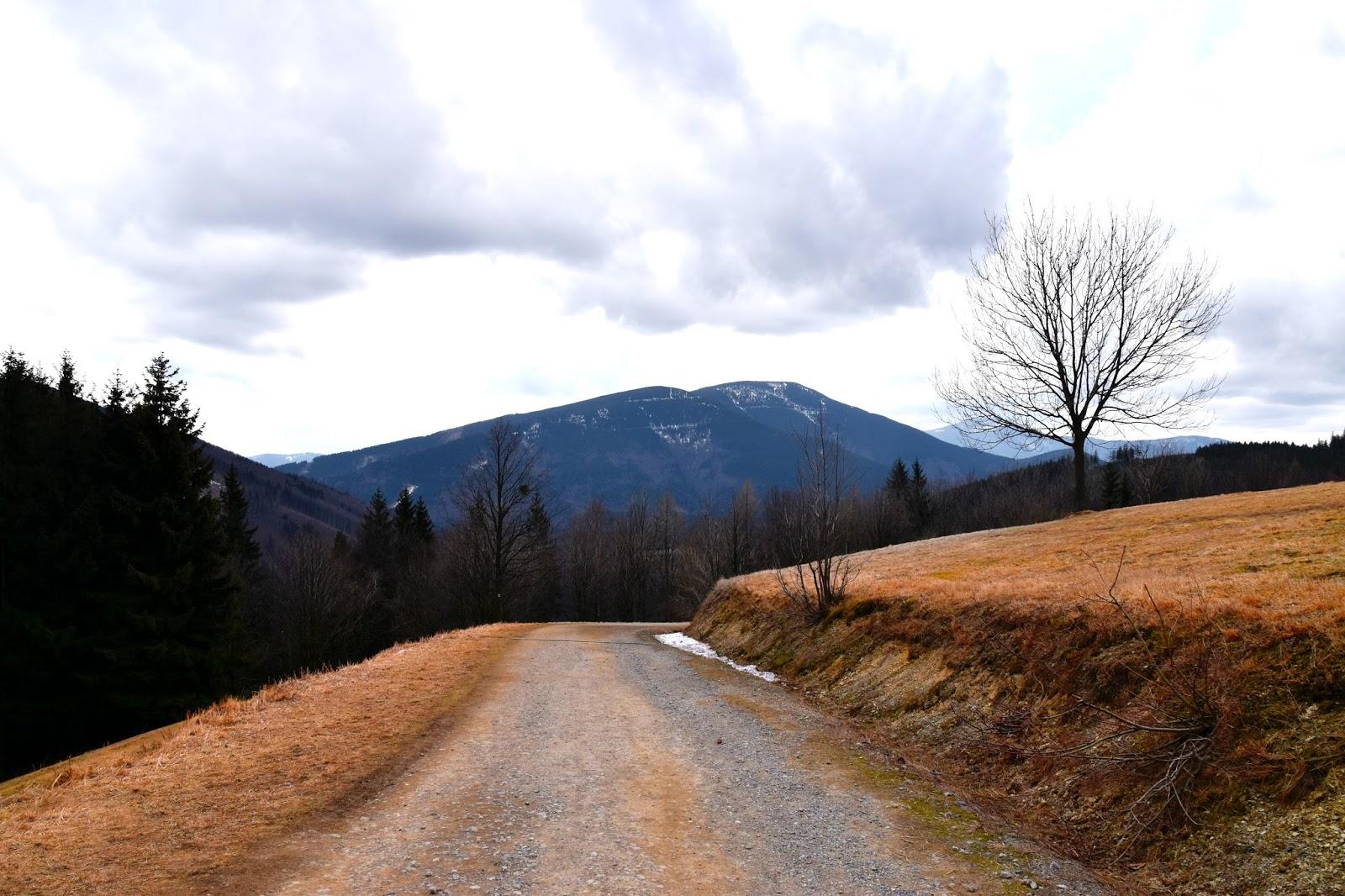 Lysá hora příroda
