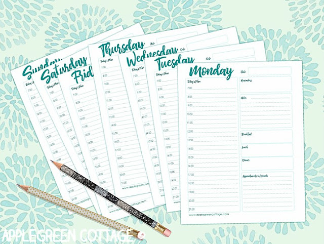photo relating to Daily Planner Printable titled Totally free Each day Planner Printable In direction of Preserve Your self Ready