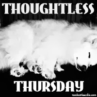 Thoughtless Thursday blog hop badge with white Eskie dog