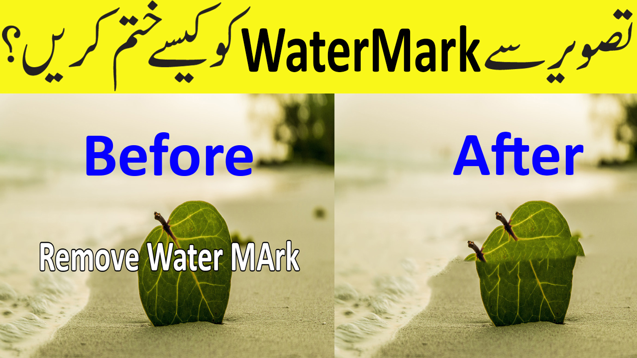 Watermark Software - Watermarking Photos in