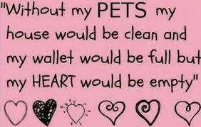 New Pets Status/ Funny Dog Status/ Best Cat Status, Short Animals Quotes