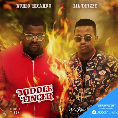 Aureo Ricardo ft Lil Drizzy - Middle Finger