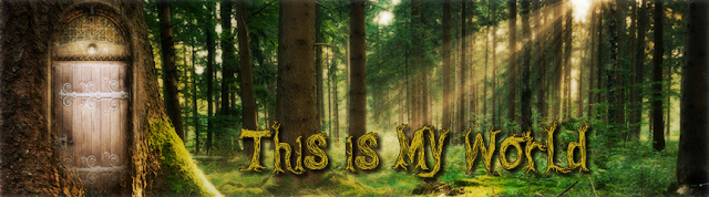 This is my World blog