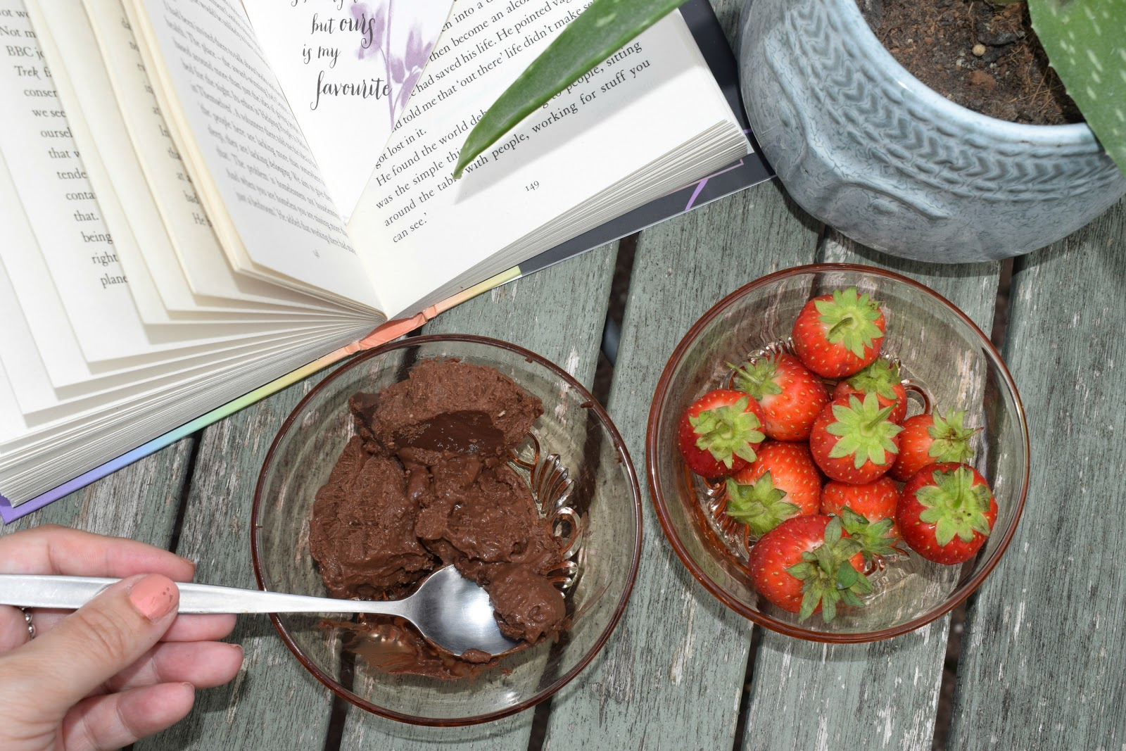 My four ingredient dairy free chocolate ice cream recipe