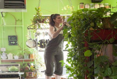 Μετέτρεψε το σπίτι της σε... ζούγκλα! Η κοπέλα που καλλιεργεί 500 φυτά σε ένα μικρό διαμέρισμα! (PHOTOS)