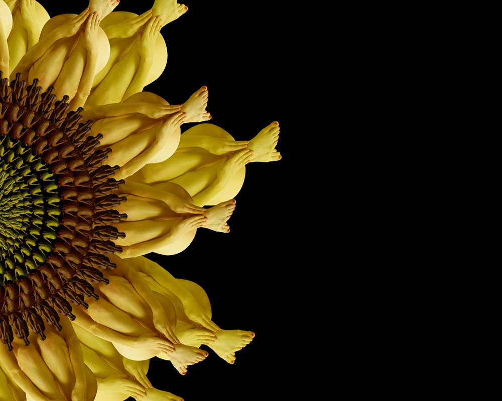 07-Sunflower-Cecelia-Webber-Nature-Replicated-with-Nude-Models-www-designstack-co
