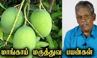 Heath Benefits Of Mangos | Tamil