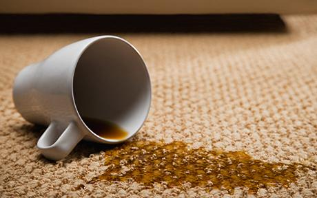 Remove Coffee Stain From Carpet >> Remove All Stains Com How To Remove Coffee Stains From Carpet