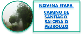 NOVENA ETAPA: CAMINO DE SANTIAGO: SALCEDA-O PEDROUZO