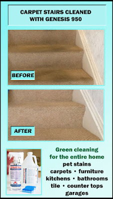 Best DIY Carpet Cleaning Solution