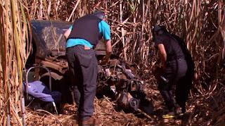 Guarda Civil de Leme encontra 14 veículos em desmanche dentro de canavial