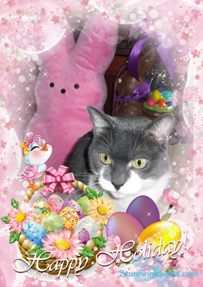 Hoppy Easter Photo Shoot