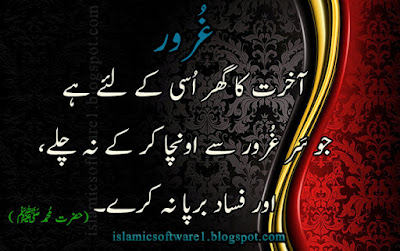 beautiful aqwal zareen in urdu