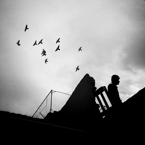 "Foto por Ako Salemi - Pigeon keeper - Birjand - serie ""Iran from my Phone"" 