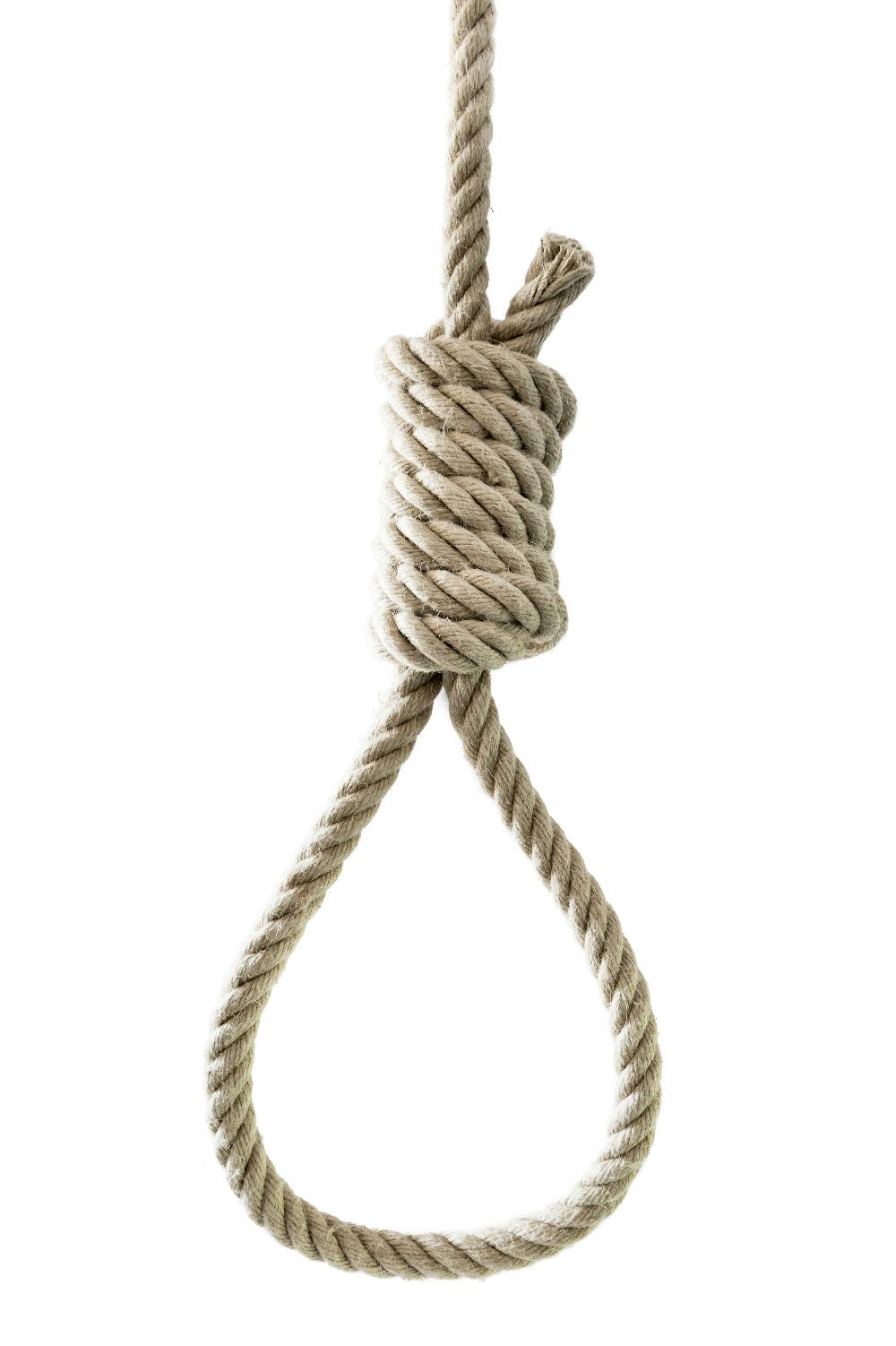 3d cgi noose hanging hentia cuties