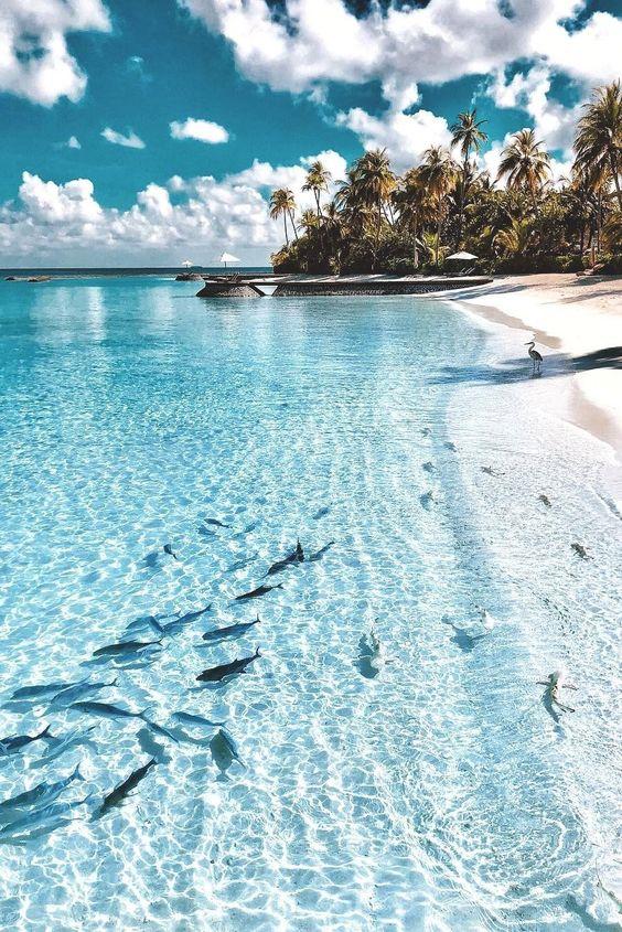16 Fondos De Pantalla De Playas