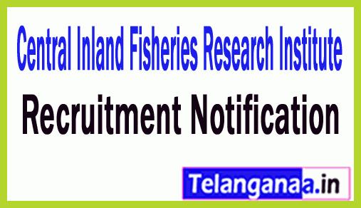 Central Inland Fisheries Research Institute CIFRI Recruitment