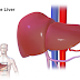 10 Things That Can Cause Liver Damage