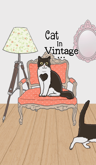 Cat in Vintage