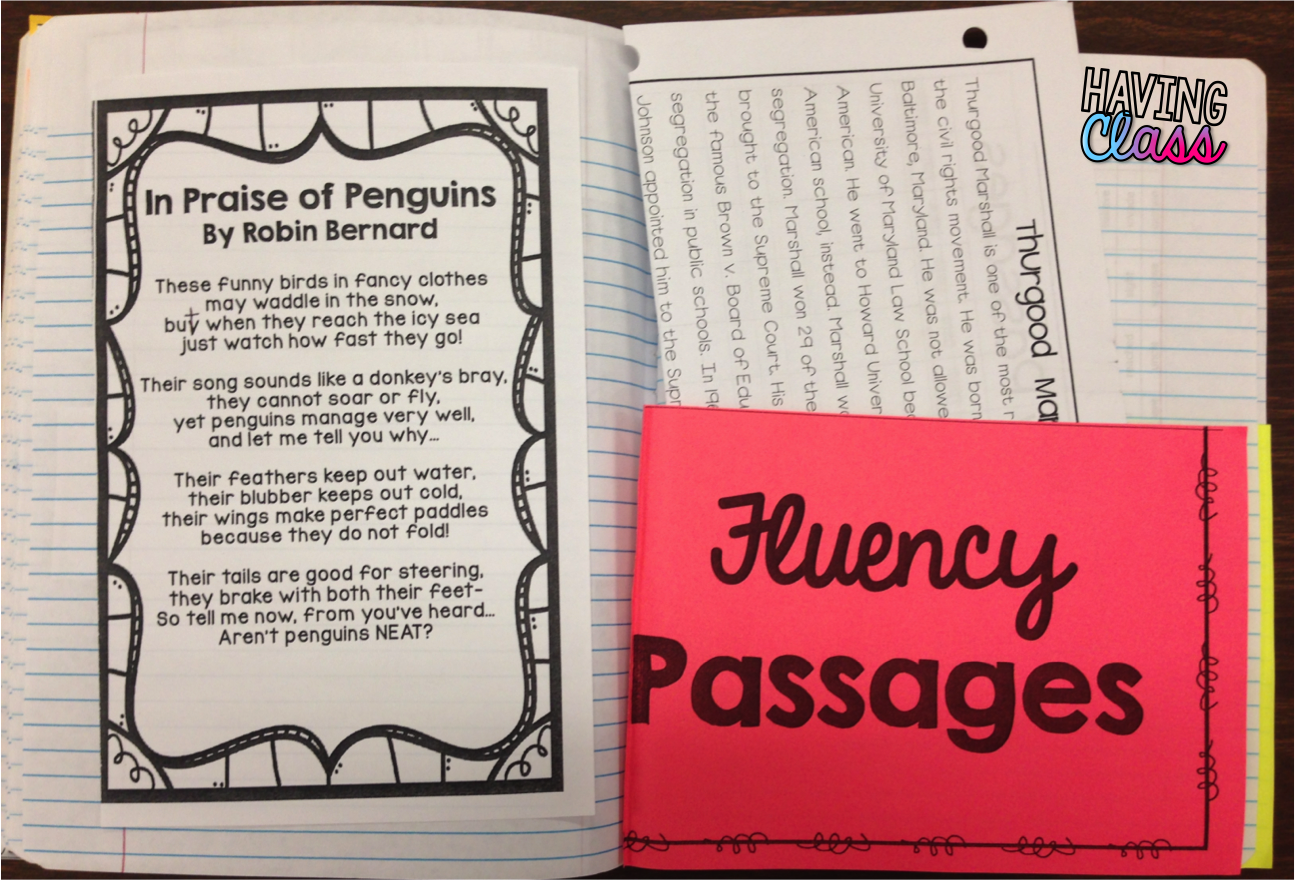 Reading Fluency Passages For 3rd Grade