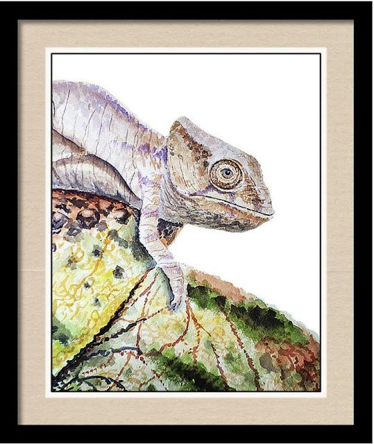 Watercolour Artist Illustrator