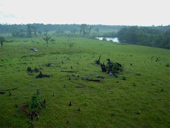 Stonehenge da Amazônia - Img 2
