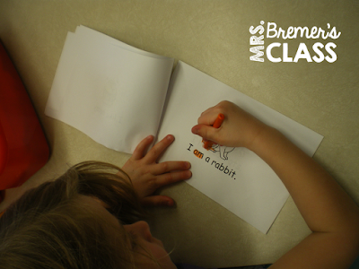 Sight word activities for literacy centers in Kindergarten