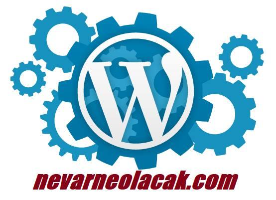Wordpress İçin En İyi Oylama Eklentileri