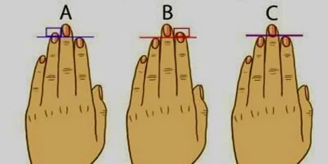 jari merupakan anggota tubuh yang berada di tangan  Kenali Kepribadian Seseorang Dengan jari Tangan