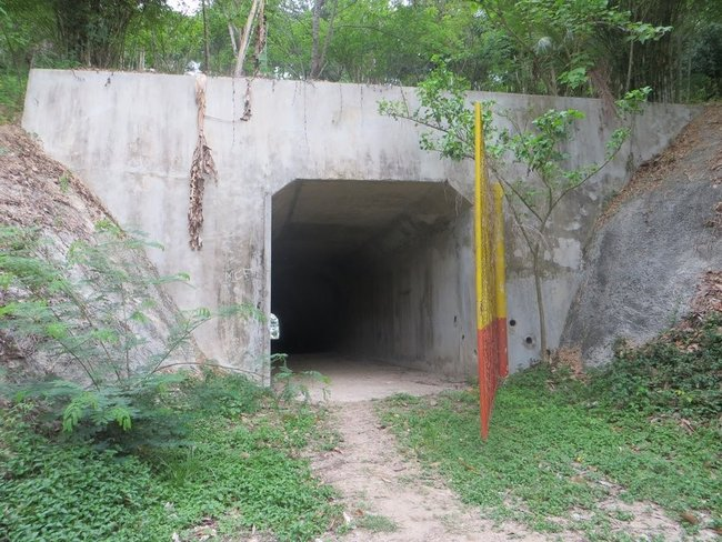 Туннель с воротами