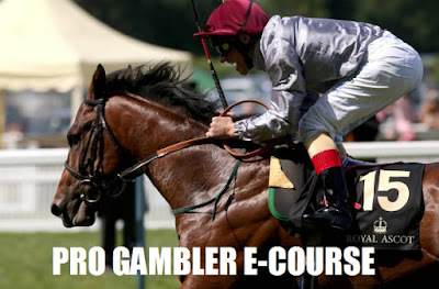 professional gambler e-course