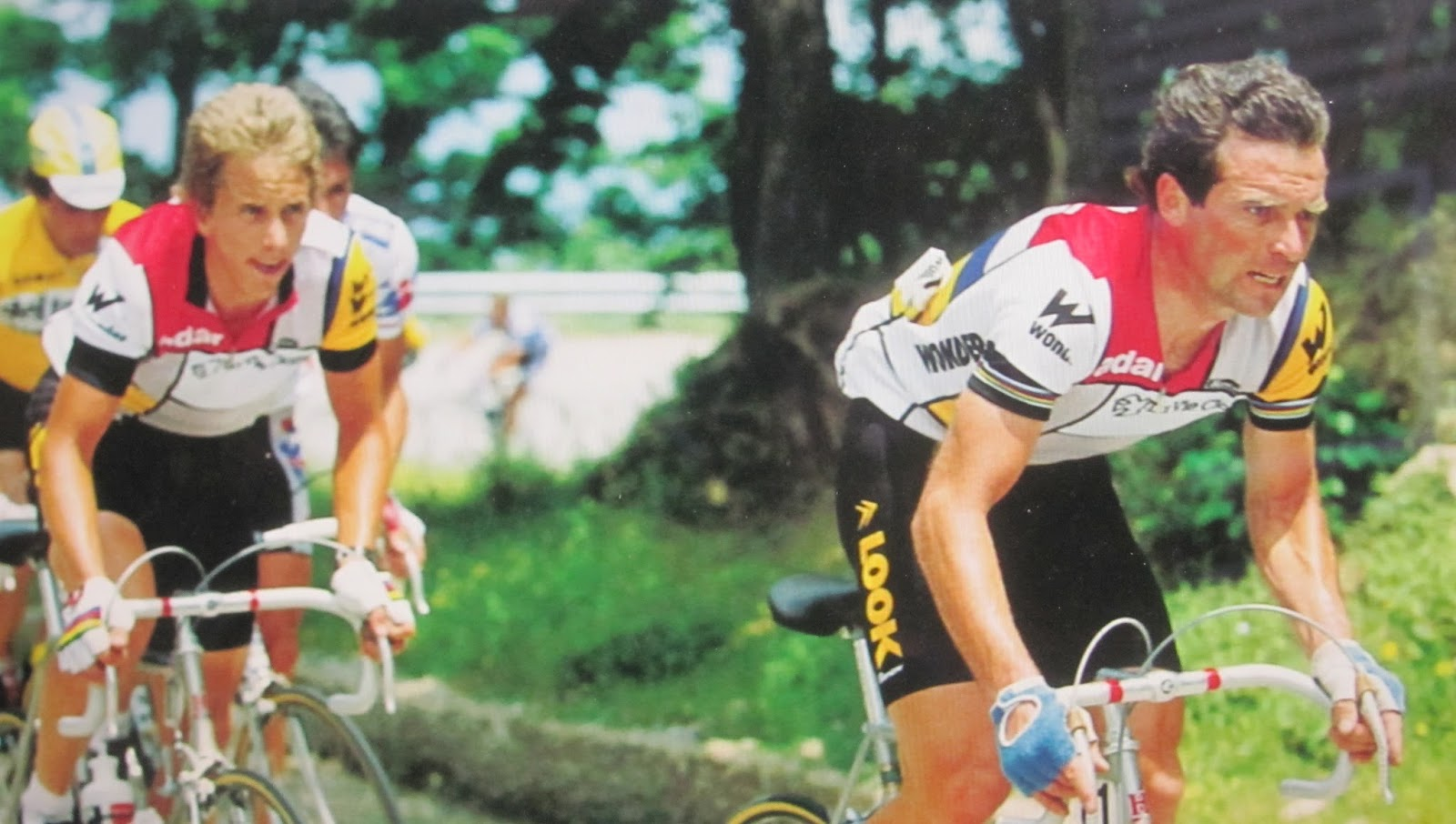 Hiring LeMond onto La Vie Claire was probably a better move for Hinault  than for the young American. da3f3a3cc
