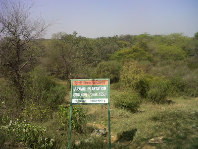 Haunted Sanjay Van in Delhi