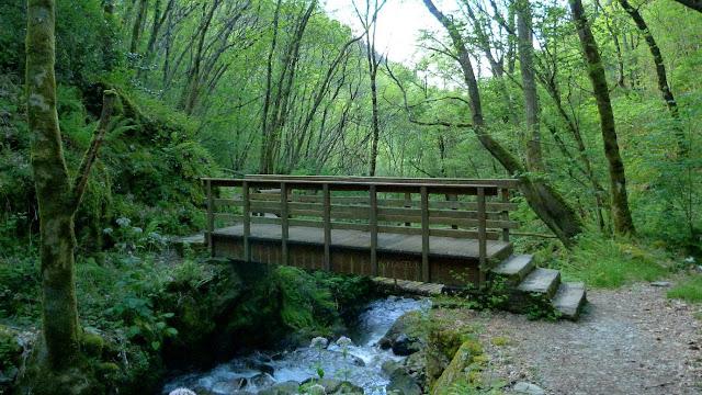 Puente subiendo a la cascada