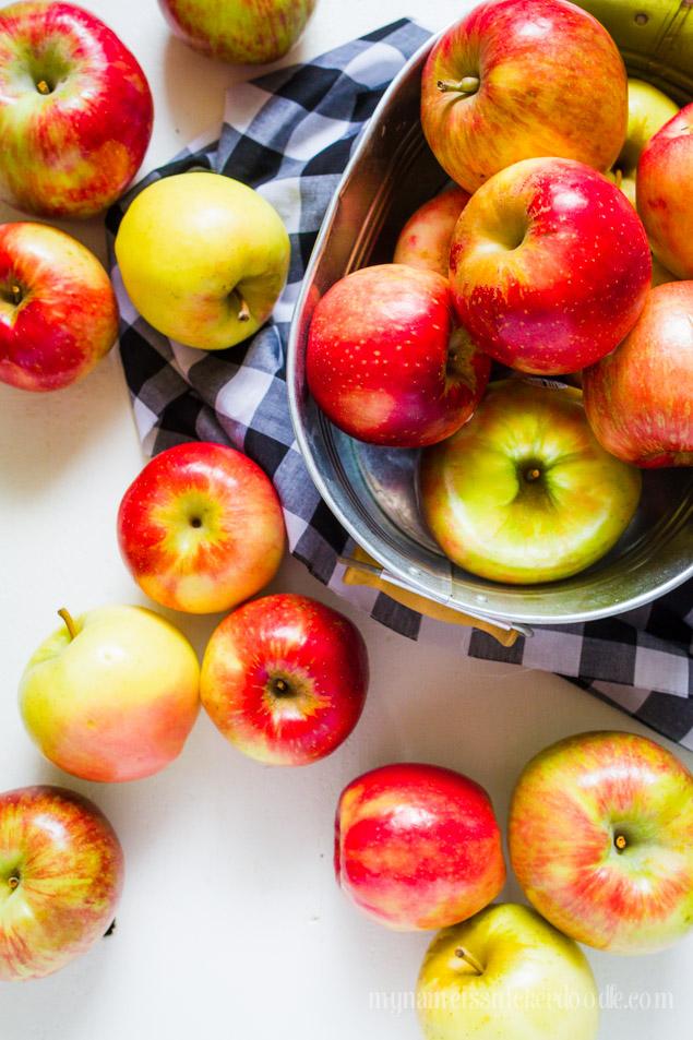 The Best Fresh Apple Crisp!  mynameissnickerdoodle.com